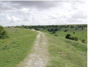 Used Path 2